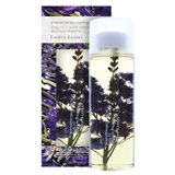 Linden Leaves - Absolute Dreams Body Oil 250mL